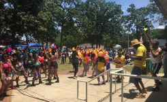 Thousands Attend Caribbean Festival in Bessemer